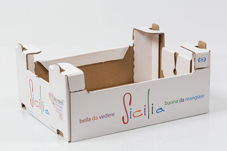 www.nuovasudimballaggi.it
